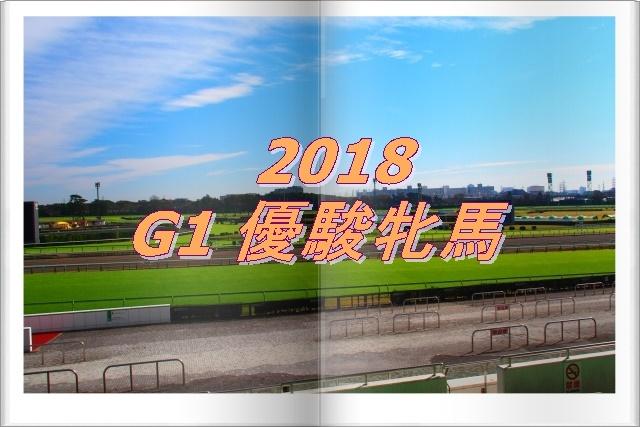 2018 G1 優駿牝馬画像.jpg